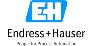 Endress Hauser Group logo