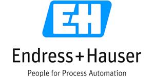 Endress Hauser Group logo